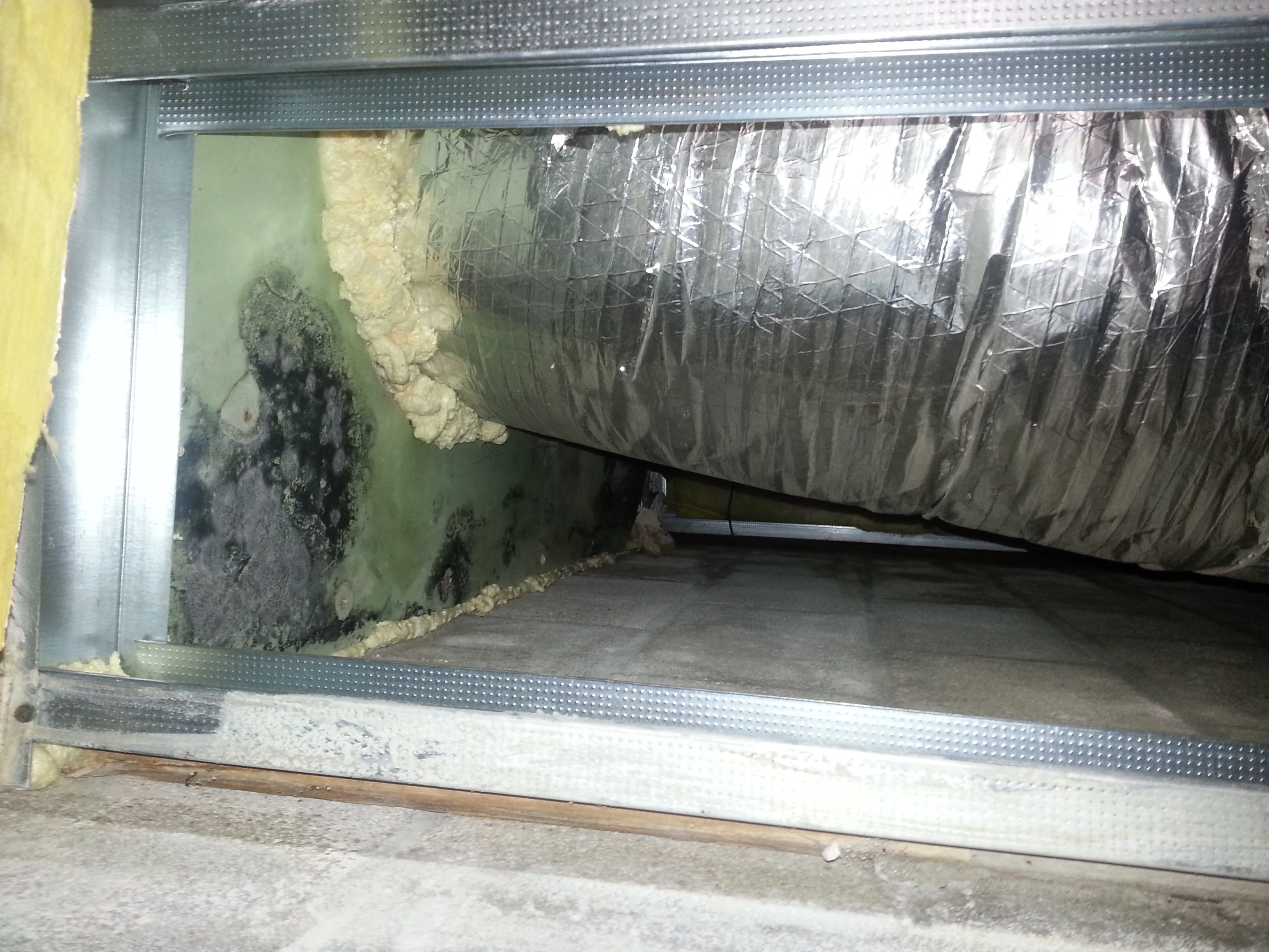 Mold Growth On Green Board Near Air Handler Code Red